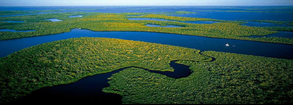 Por qué la problemática ambiental NO es una problemáticaestatal